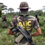 A propósito del paramilitarismo