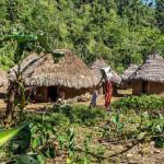 Tierra, territorio, cultura e interculturalidad