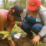 Venezuela: Brigada de Trabajo Voluntario Antonio José de Sucre