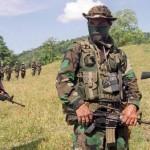 El obstáculo paramilitar