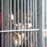 Gobierno indulta a 30 presos de las FARC