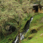Conflictos agrarios y paz en Colombia (III)