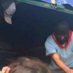 México: Zapatistas entregan víveres al magisterio en lucha
